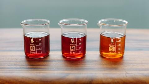 Fish Sauce Taste Test Color Comparrison