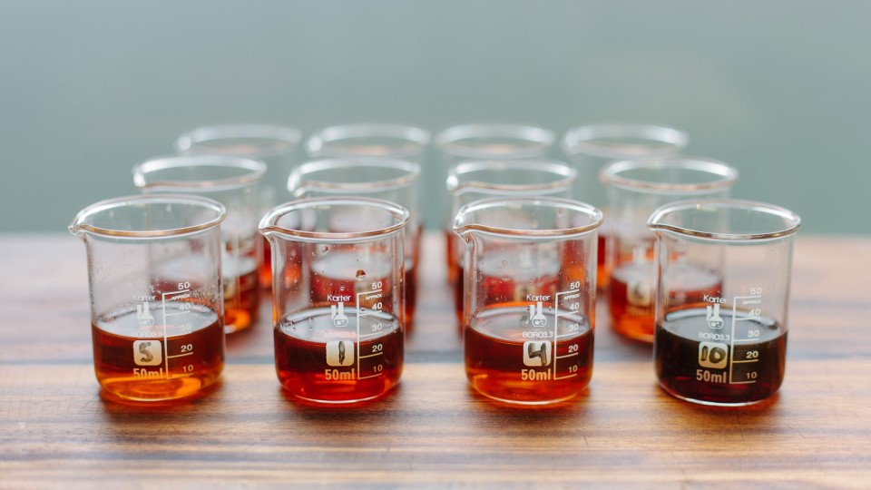 Fish Sauce Taste Test 13 Brands Compared  Our Daily Brine