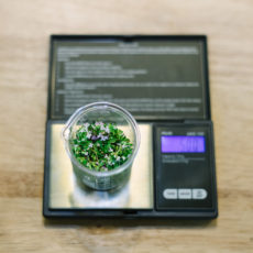 American Weigh 100g x 0.01g Precision Scale