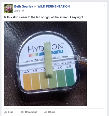Facebook posting to Wild Fermentation group demonstrates confusion of test strips