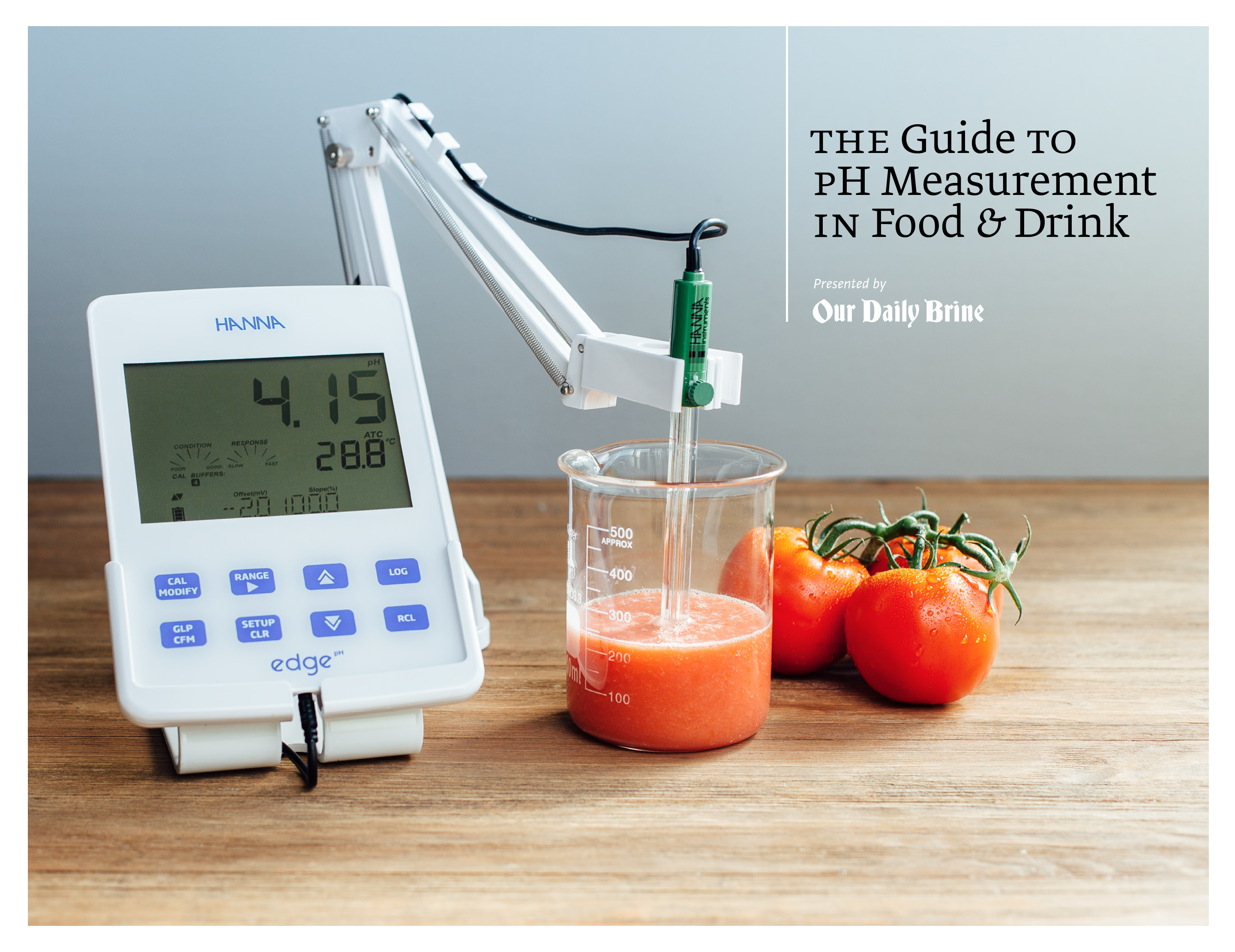 Examples Of Measurement Instruments : A comprehensive guide to testing ph of food and drink